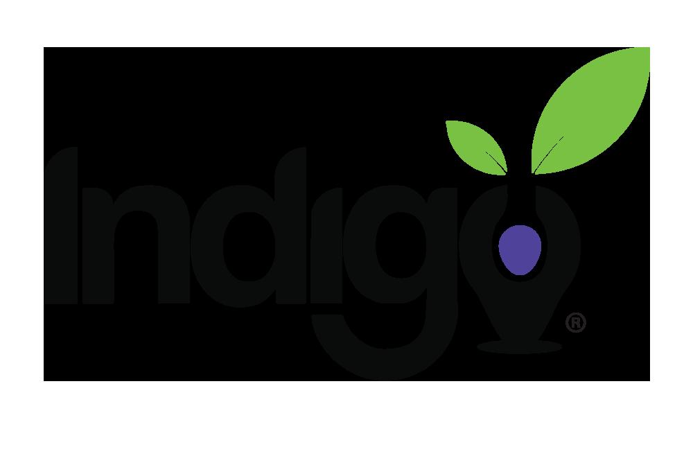 Indigo Education Company
